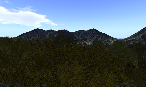 tarnwald
